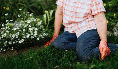 Záhrada nám dáva v lete zabrať. Ochráňte sa pri práci